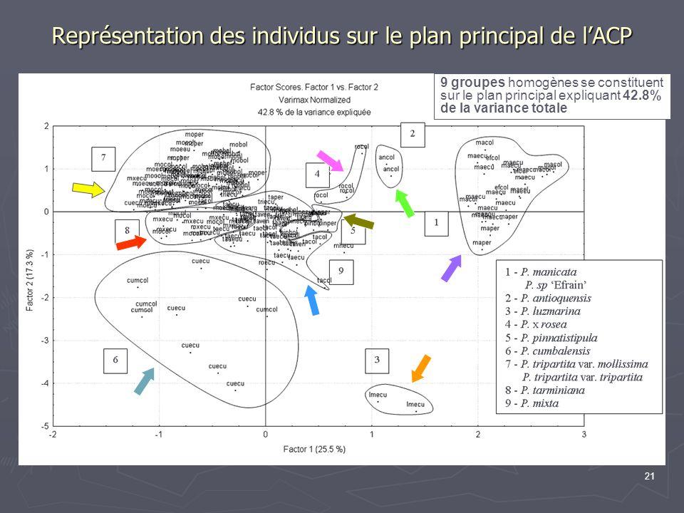 Représentation des individus sur le plan principal de l'ACP