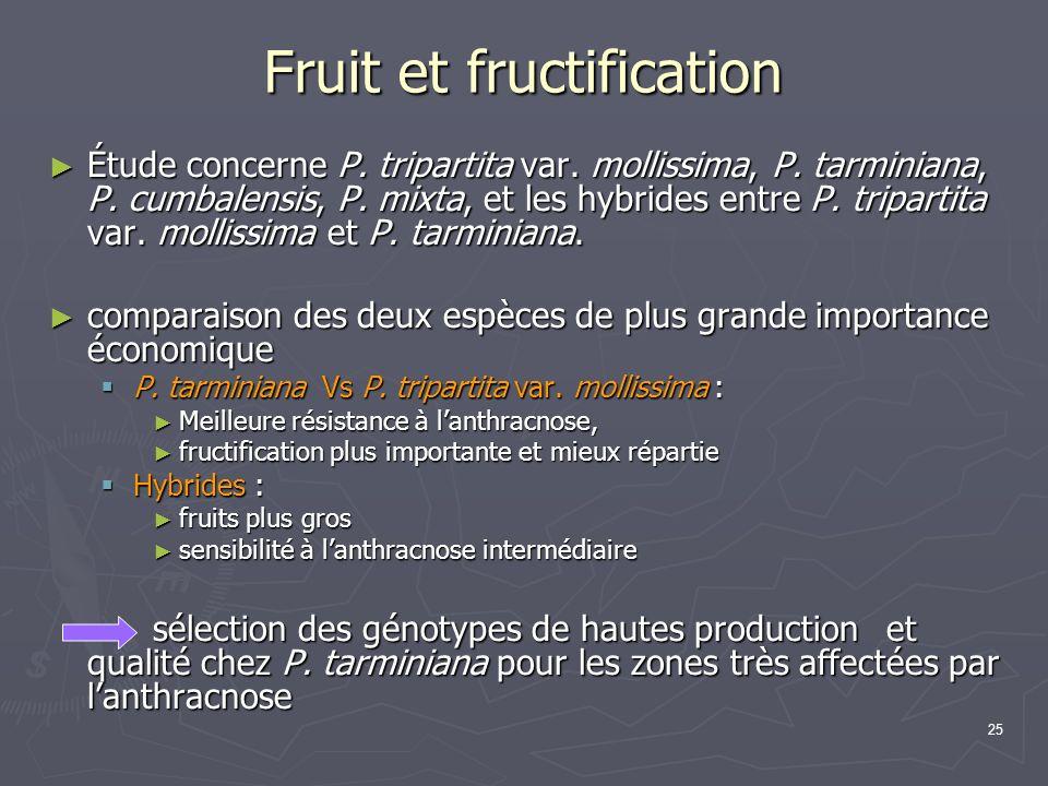 Fruit et fructification