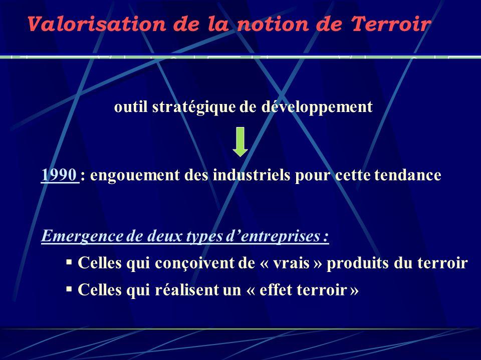 outil stratégique de développement