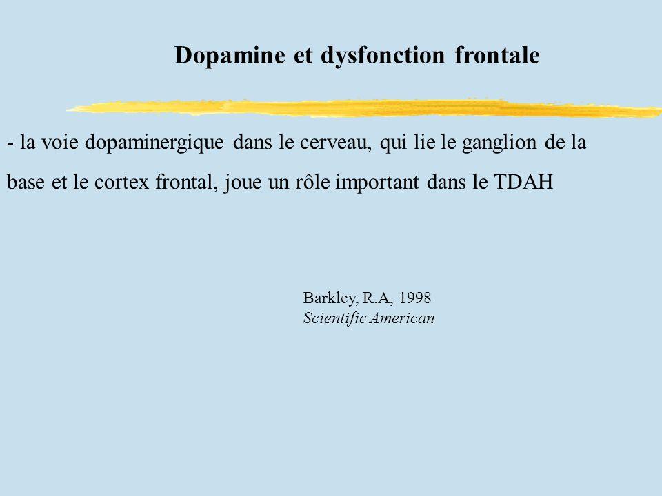Dopamine et dysfonction frontale