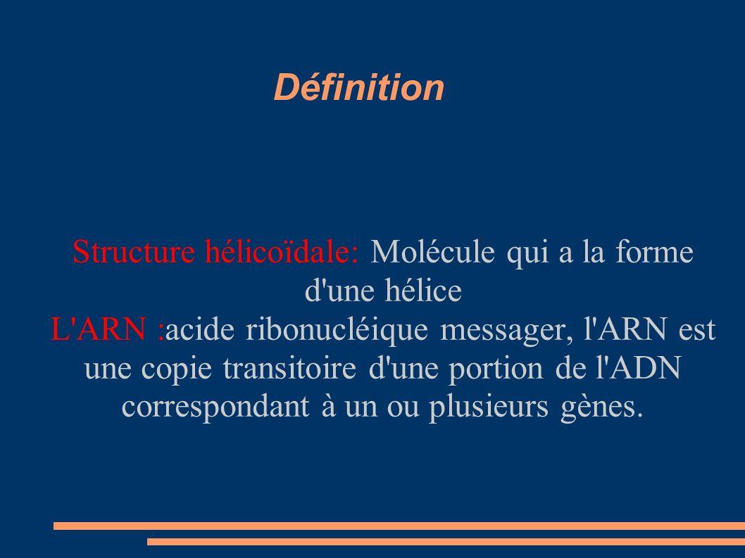 Structure hélicoïdale: Molécule qui a la forme d une hélice