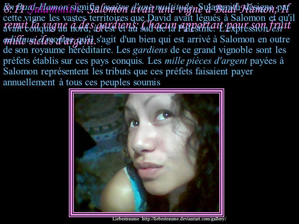 8:11 Sulammith : Salomon avait une vigne à Baal-Hamon; Il remit la vigne à des gardiens; Chacun apportait pour son fruit mille sicles d argent.