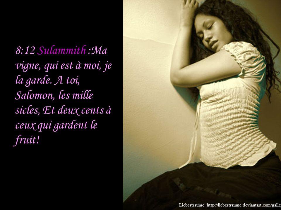 8:12 Sulammith :Ma vigne, qui est à moi, je la garde