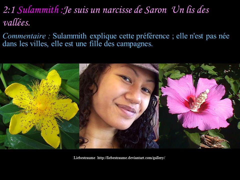 2:1 Sulammith :Je suis un narcisse de Saron Un lis des vallées.