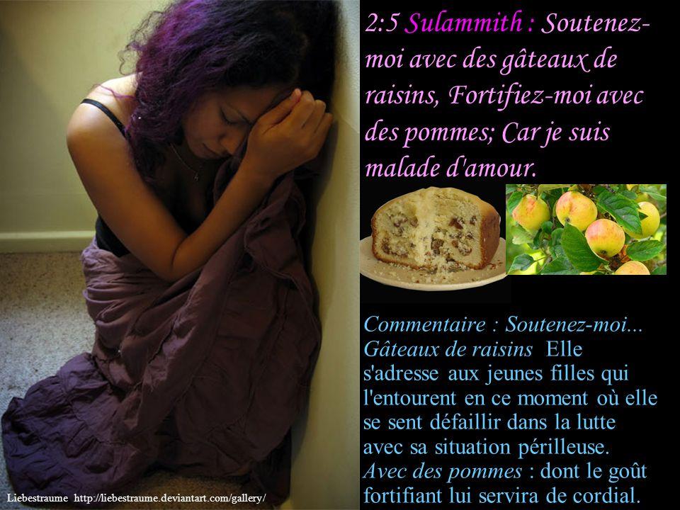 2:5 Sulammith : Soutenez-moi avec des gâteaux de raisins, Fortifiez-moi avec des pommes; Car je suis malade d amour.
