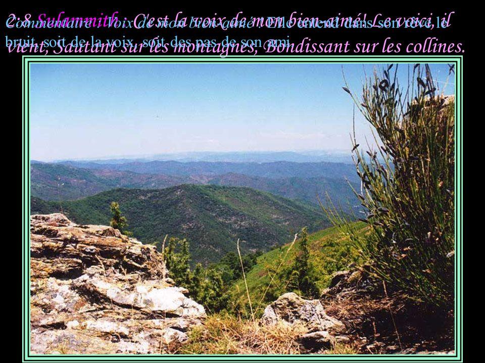2:8 Sulammith : C est la voix de mon bien-aimé