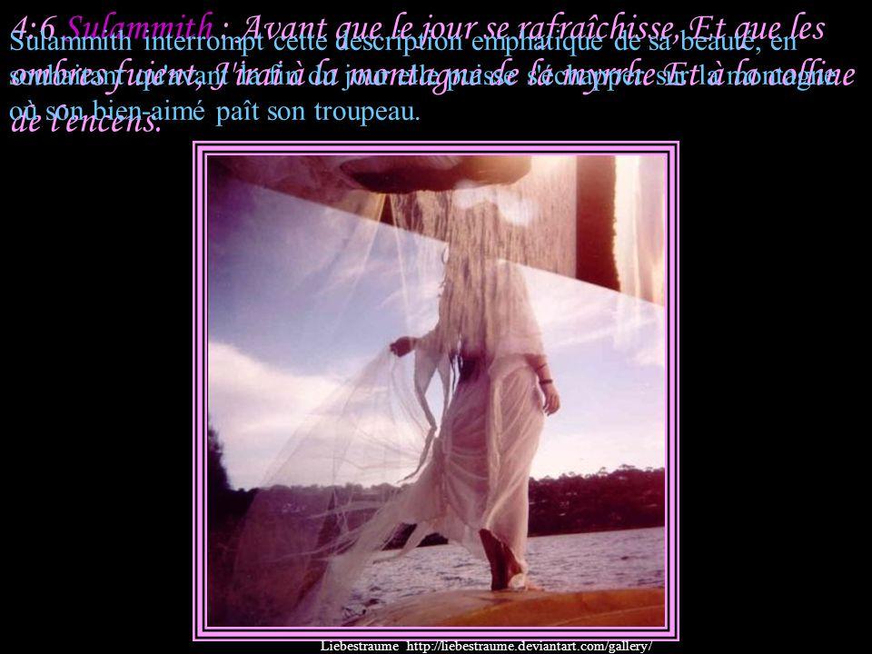 4:6 Sulammith : Avant que le jour se rafraîchisse, Et que les ombres fuient, J irai à la montagne de la myrrhe Et à la colline de l encens.
