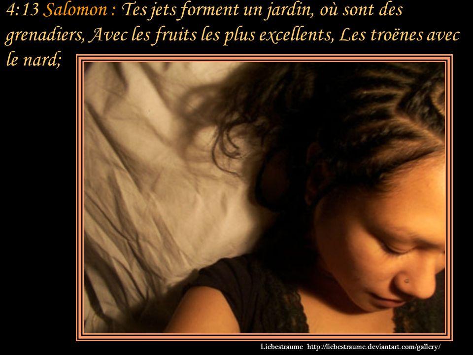 4:13 Salomon : Tes jets forment un jardin, où sont des grenadiers, Avec les fruits les plus excellents, Les troënes avec le nard;