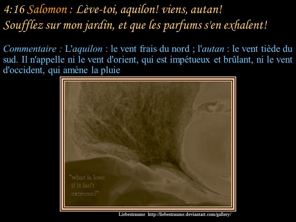 4:16 Salomon : Lève-toi, aquilon. viens, autan