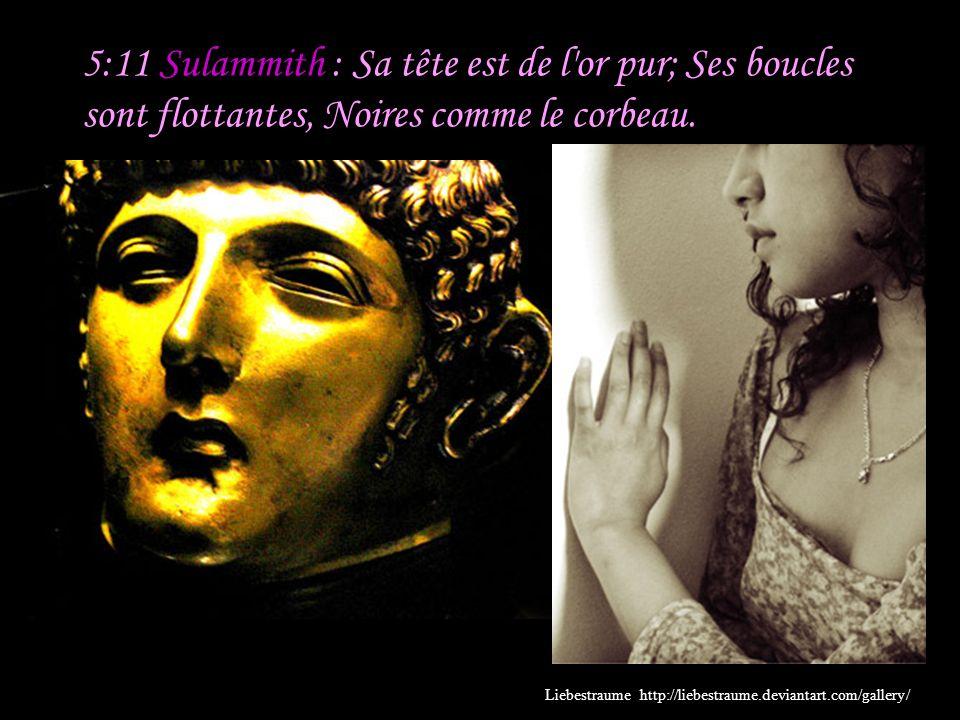5:11 Sulammith : Sa tête est de l or pur; Ses boucles sont flottantes, Noires comme le corbeau.