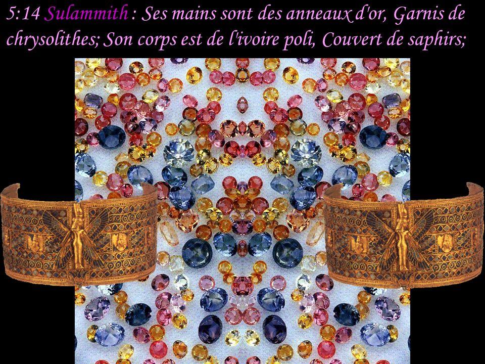 5:14 Sulammith : Ses mains sont des anneaux d or, Garnis de chrysolithes; Son corps est de l ivoire poli, Couvert de saphirs;
