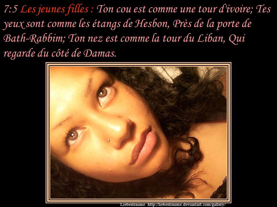 7:5 Les jeunes filles : Ton cou est comme une tour d ivoire; Tes yeux sont comme les étangs de Hesbon, Près de la porte de Bath-Rabbim; Ton nez est comme la tour du Liban, Qui regarde du côté de Damas.