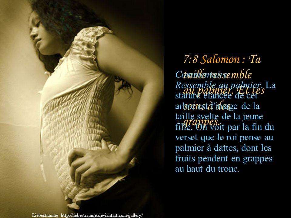 7:8 Salomon : Ta taille ressemble au palmier, Et tes seins à des grappes.