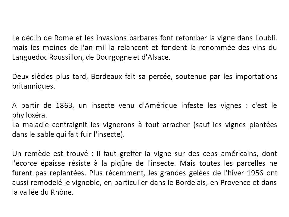 Le déclin de Rome et les invasions barbares font retomber la vigne dans l oubli. mais les moines de l an mil la relancent et fondent la renommée des vins du Languedoc Roussillon, de Bourgogne et d Alsace.