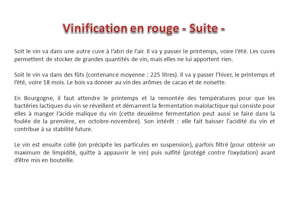 Vinification en rouge - Suite -