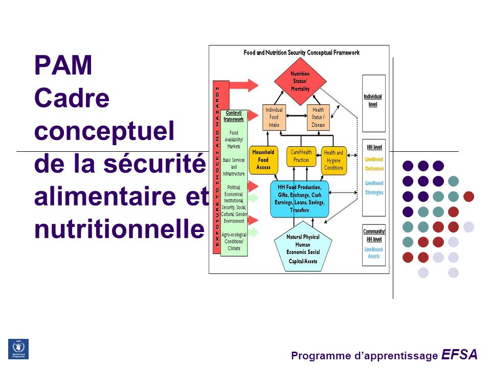 PAM Cadre conceptuel de la sécurité alimentaire et nutritionnelle