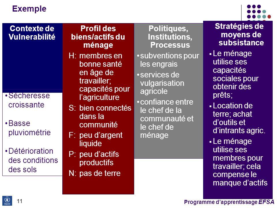 Stratégies de moyens de subsistance