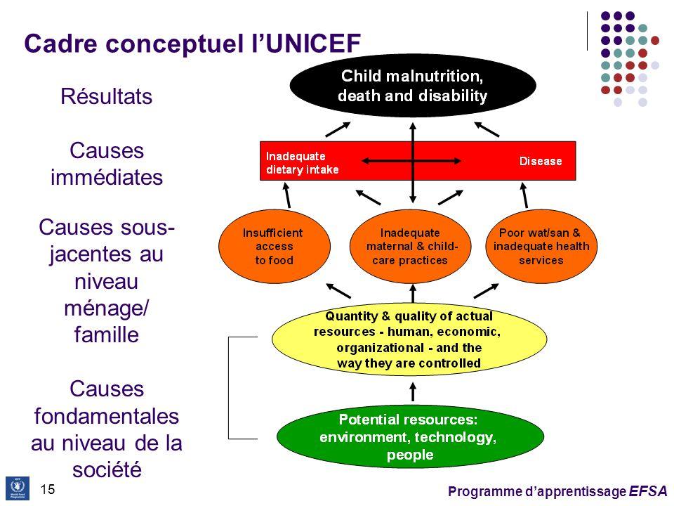 Cadre conceptuel l'UNICEF