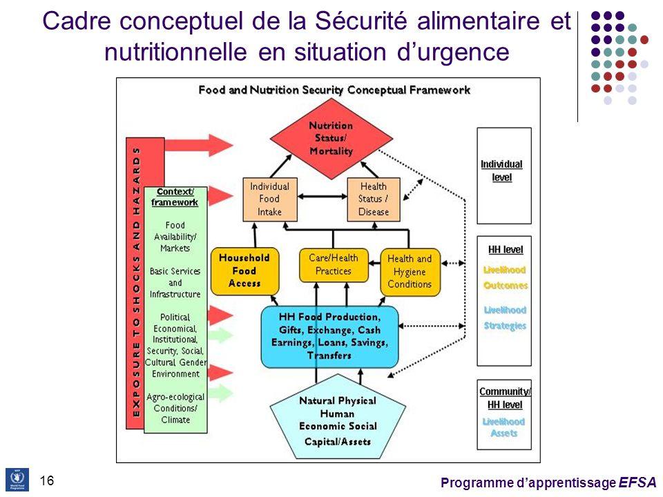 Cadre conceptuel de la Sécurité alimentaire et nutritionnelle en situation d'urgence