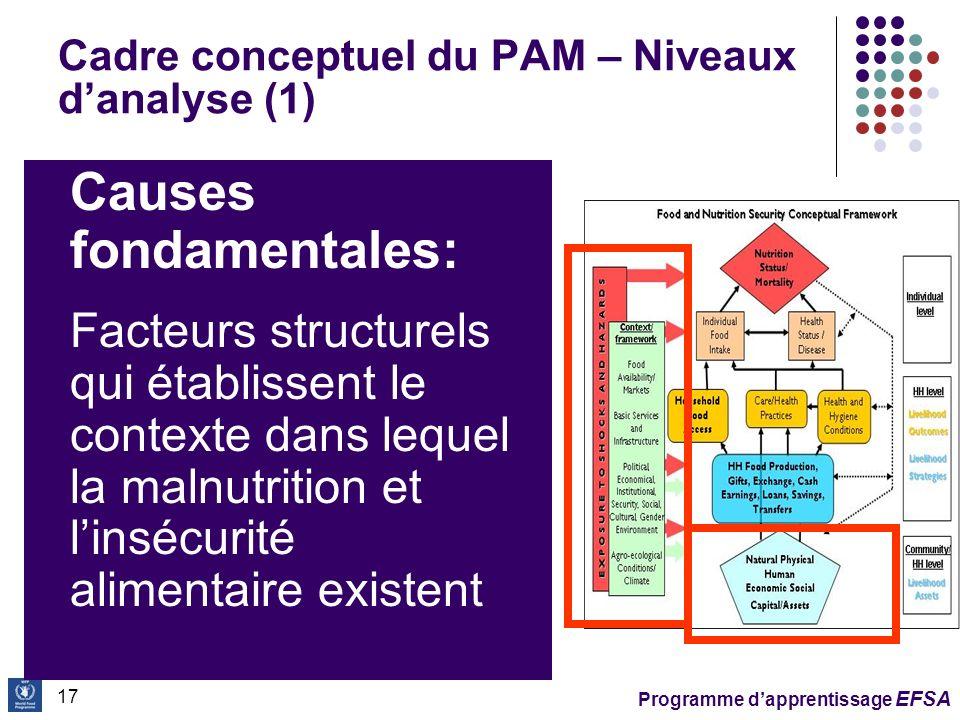 Cadre conceptuel du PAM – Niveaux d'analyse (1)