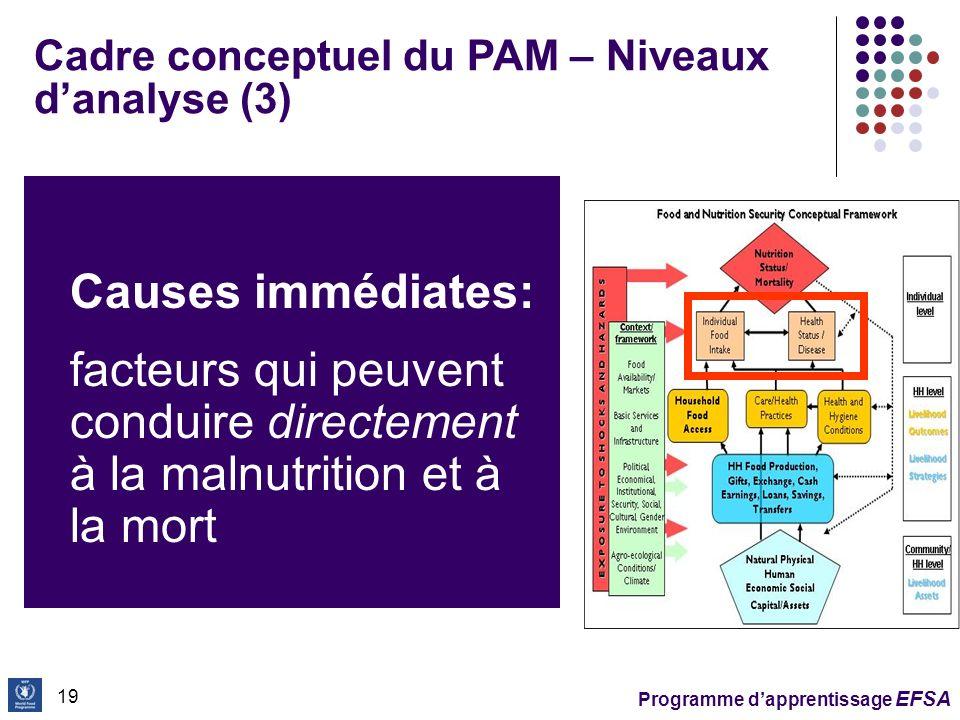 Cadre conceptuel du PAM – Niveaux d'analyse (3)