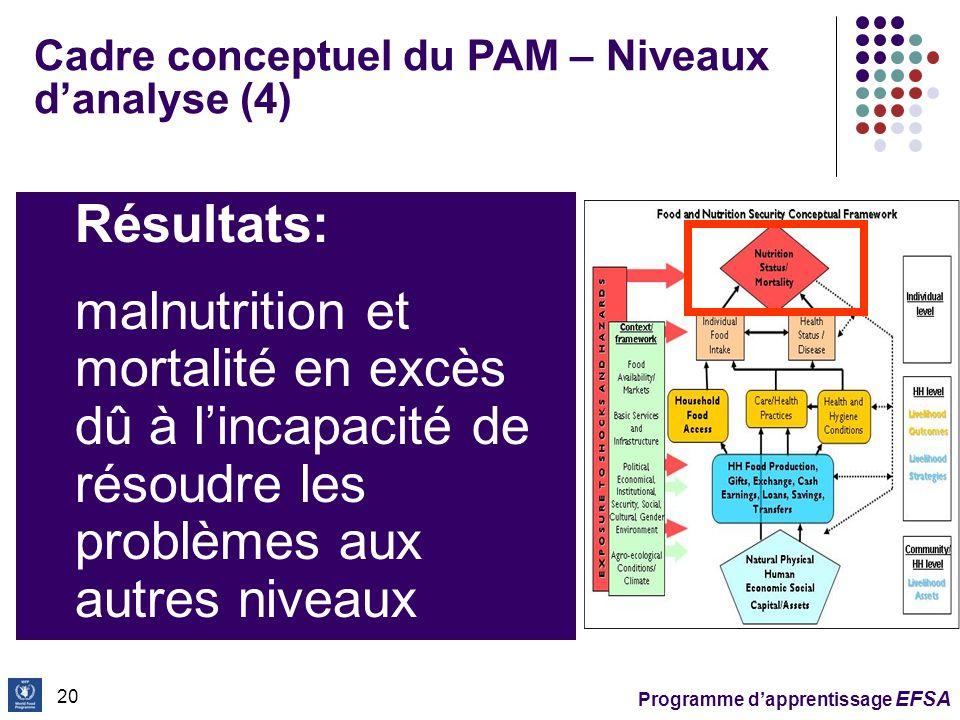 Cadre conceptuel du PAM – Niveaux d'analyse (4)