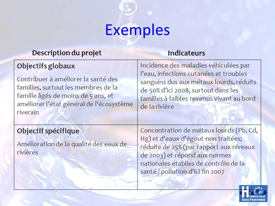 Exemples Description du projet Indicateurs Objectifs globaux