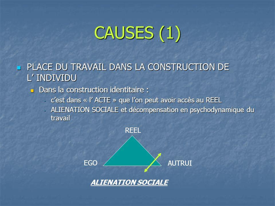 CAUSES (1) PLACE DU TRAVAIL DANS LA CONSTRUCTION DE L' INDIVIDU