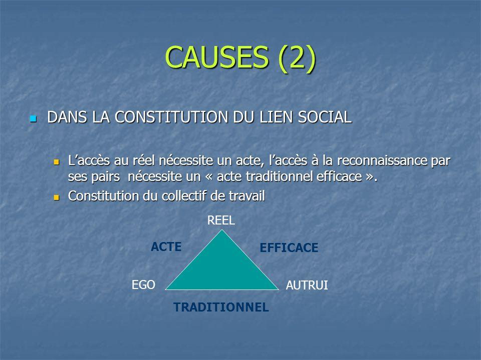 CAUSES (2) DANS LA CONSTITUTION DU LIEN SOCIAL