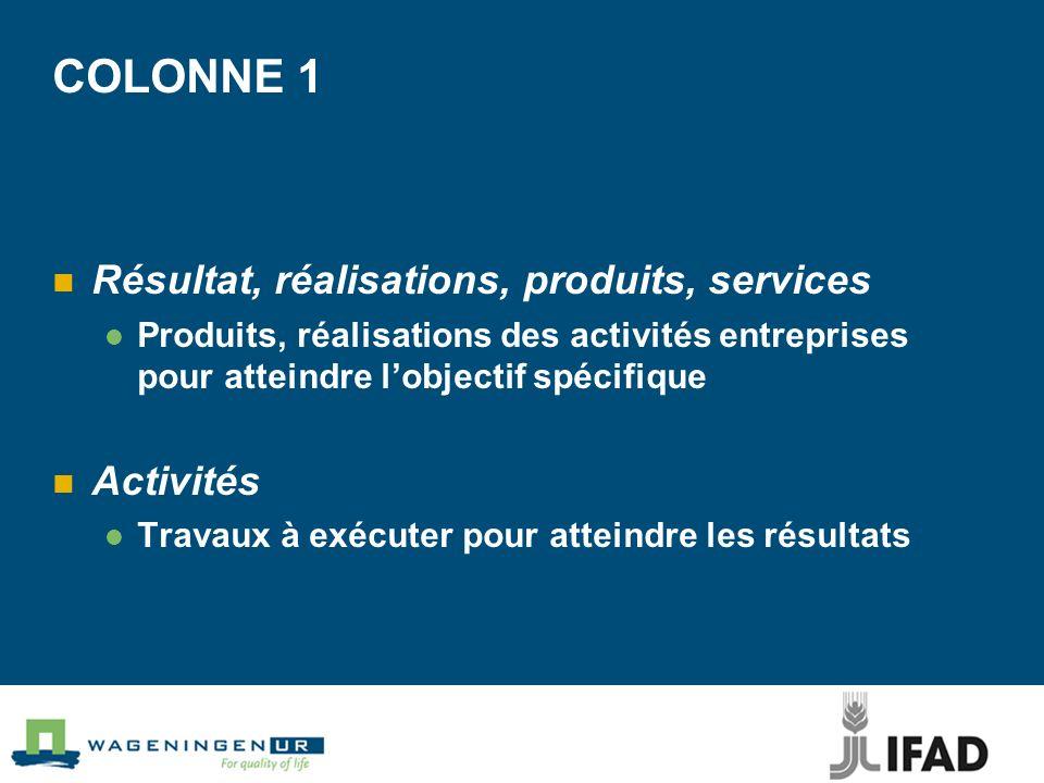 COLONNE 1 Résultat, réalisations, produits, services Activités