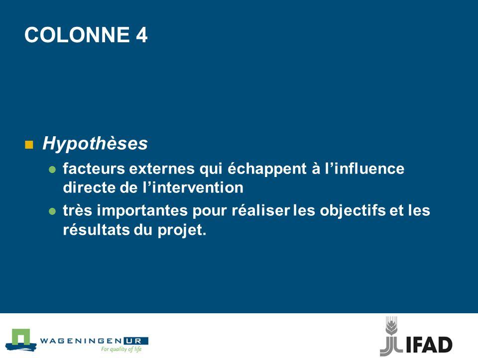 COLONNE 4 Hypothèses. facteurs externes qui échappent à l'influence directe de l'intervention.