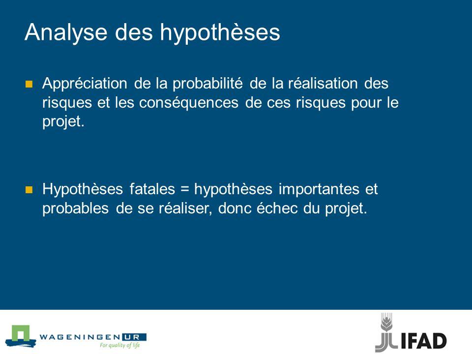 Analyse des hypothèses