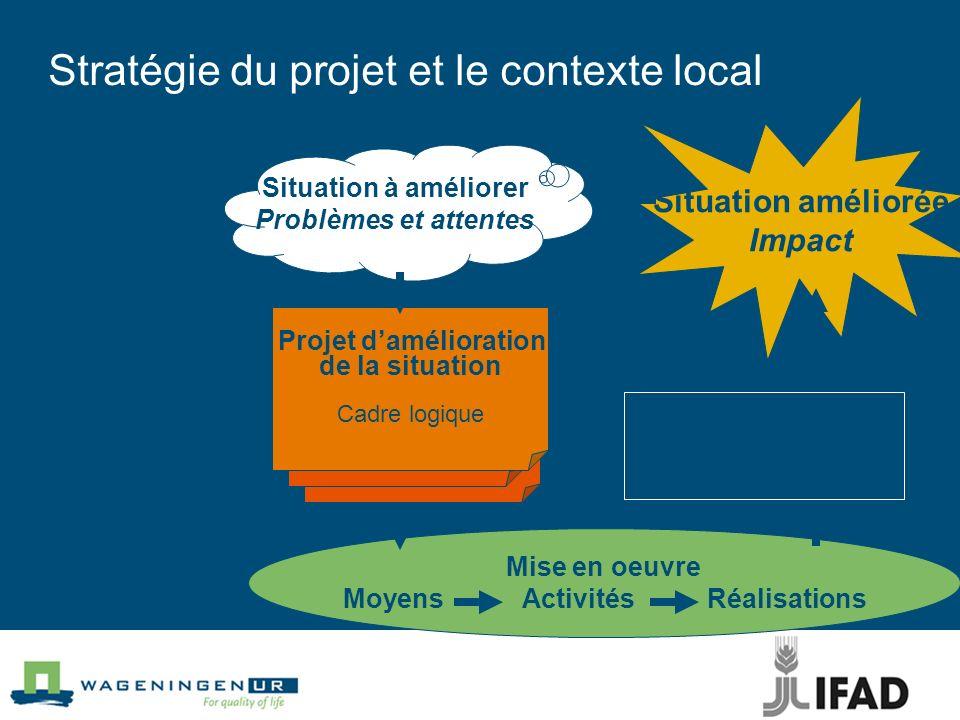 Stratégie du projet et le contexte local