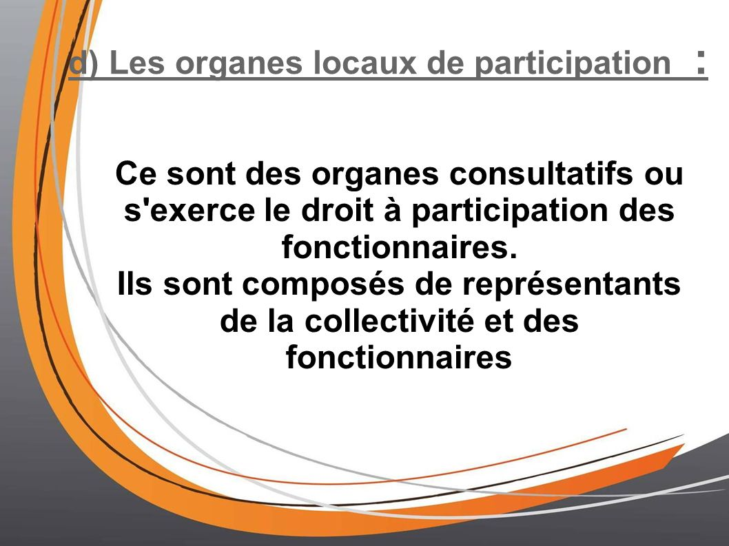 d) Les organes locaux de participation :