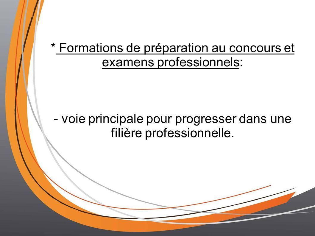 * Formations de préparation au concours et examens professionnels: