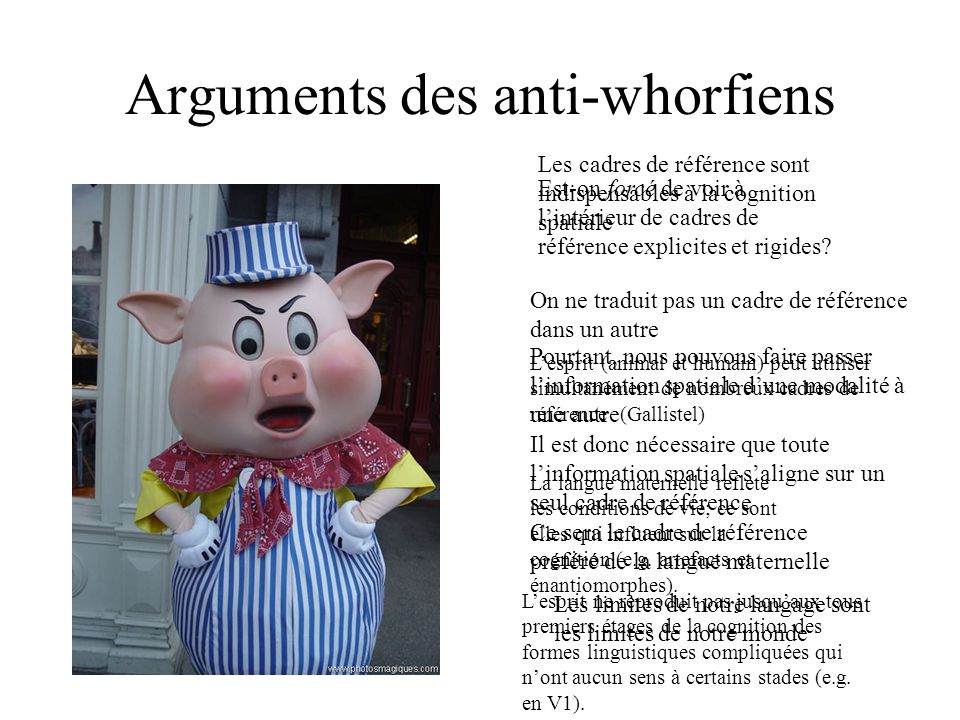 Arguments des anti-whorfiens
