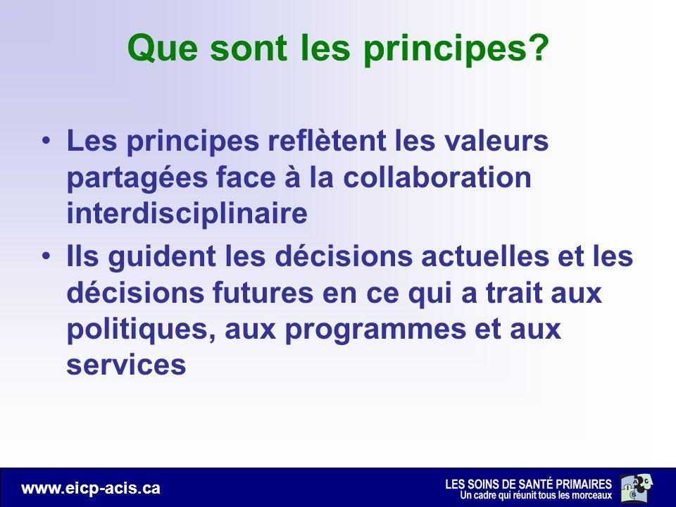 Que sont les principes Les principes reflètent les valeurs partagées face à la collaboration interdisciplinaire.