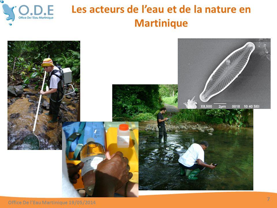 Les acteurs de l'eau et de la nature en Martinique