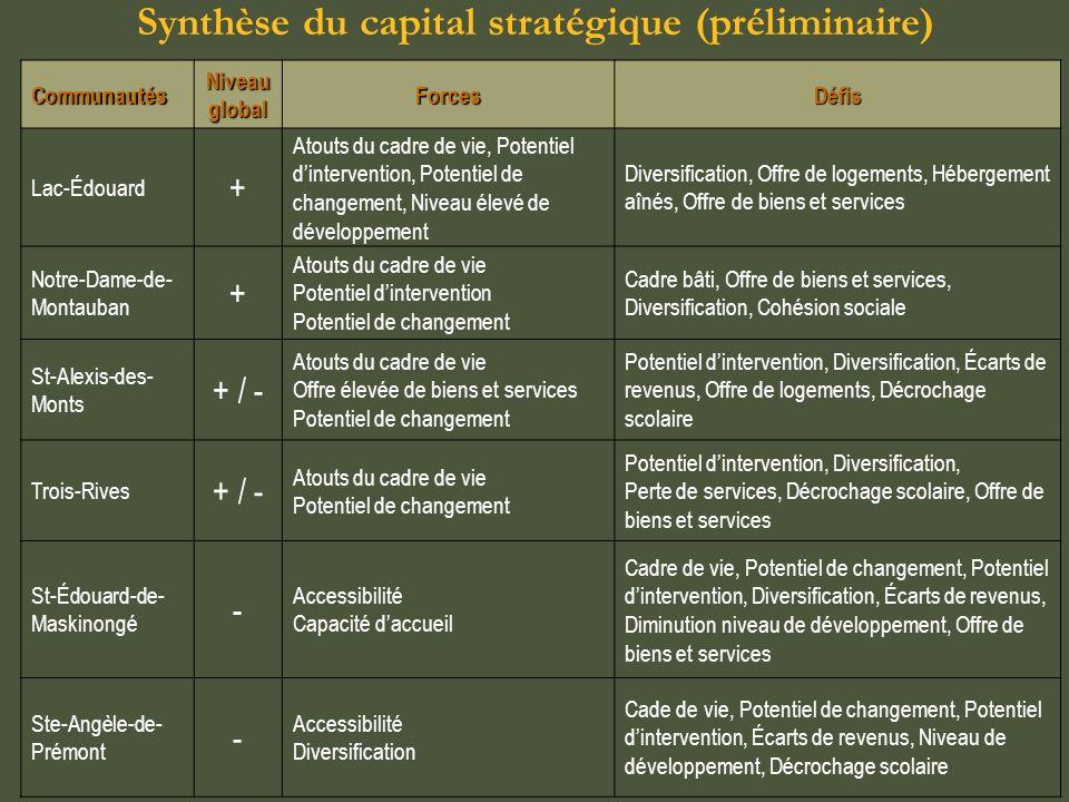 Synthèse du capital stratégique (préliminaire)