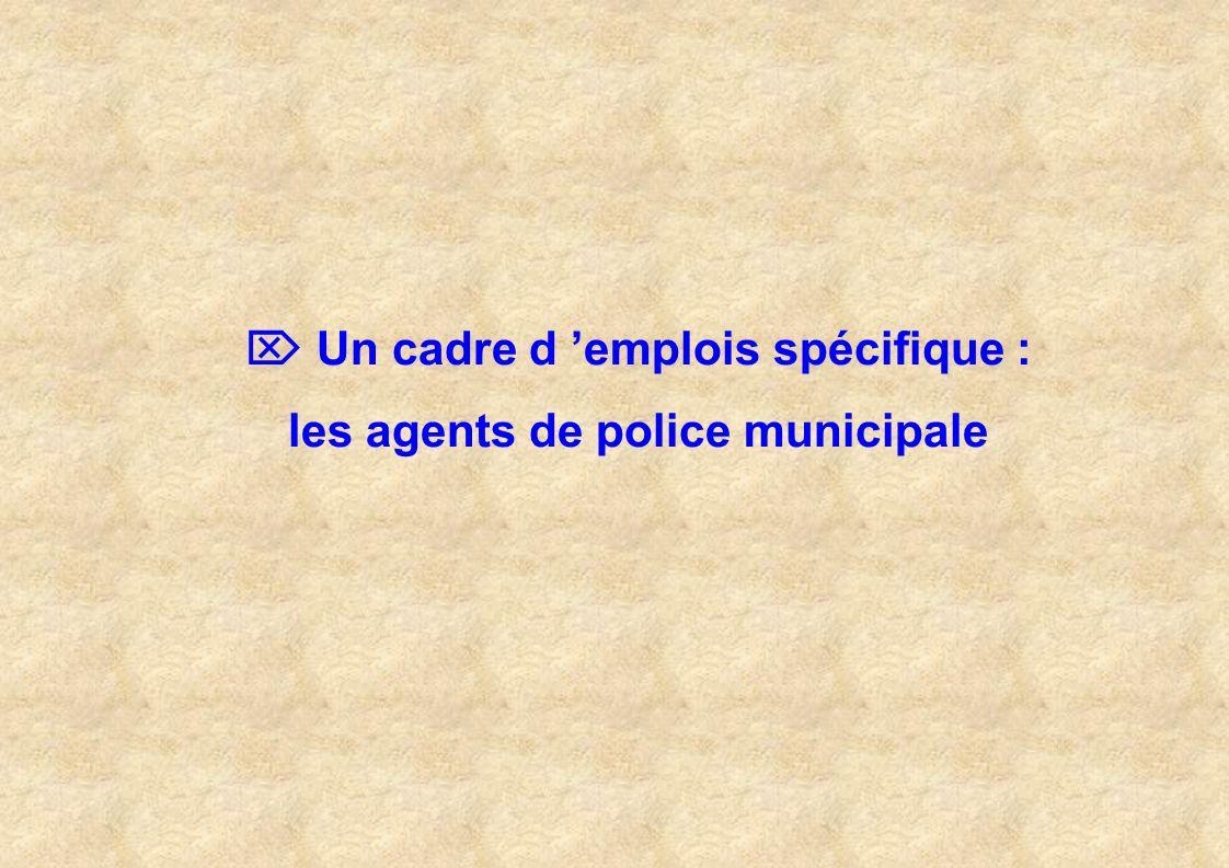  Un cadre d 'emplois spécifique : les agents de police municipale