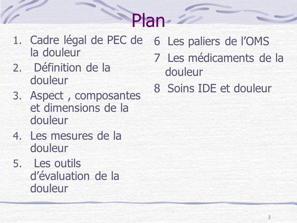 Plan Cadre légal de PEC de la douleur Définition de la douleur