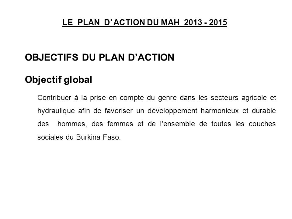 LE PLAN D' ACTION DU MAH 2013 - 2015