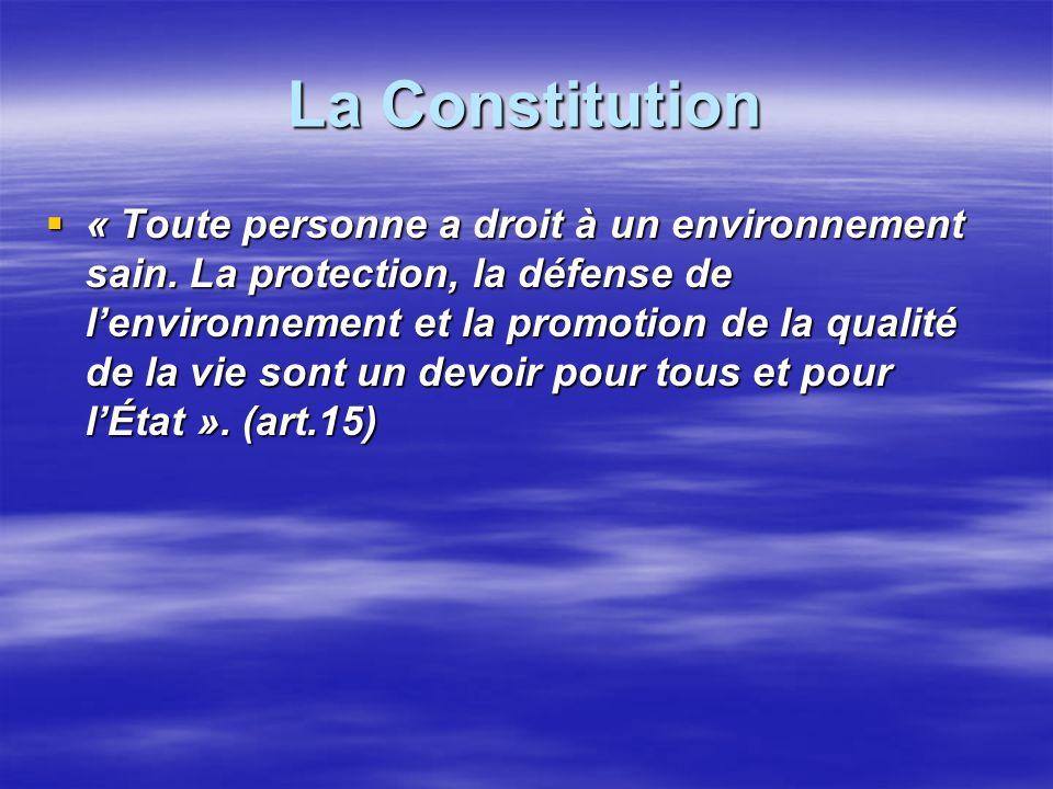 La Constitution