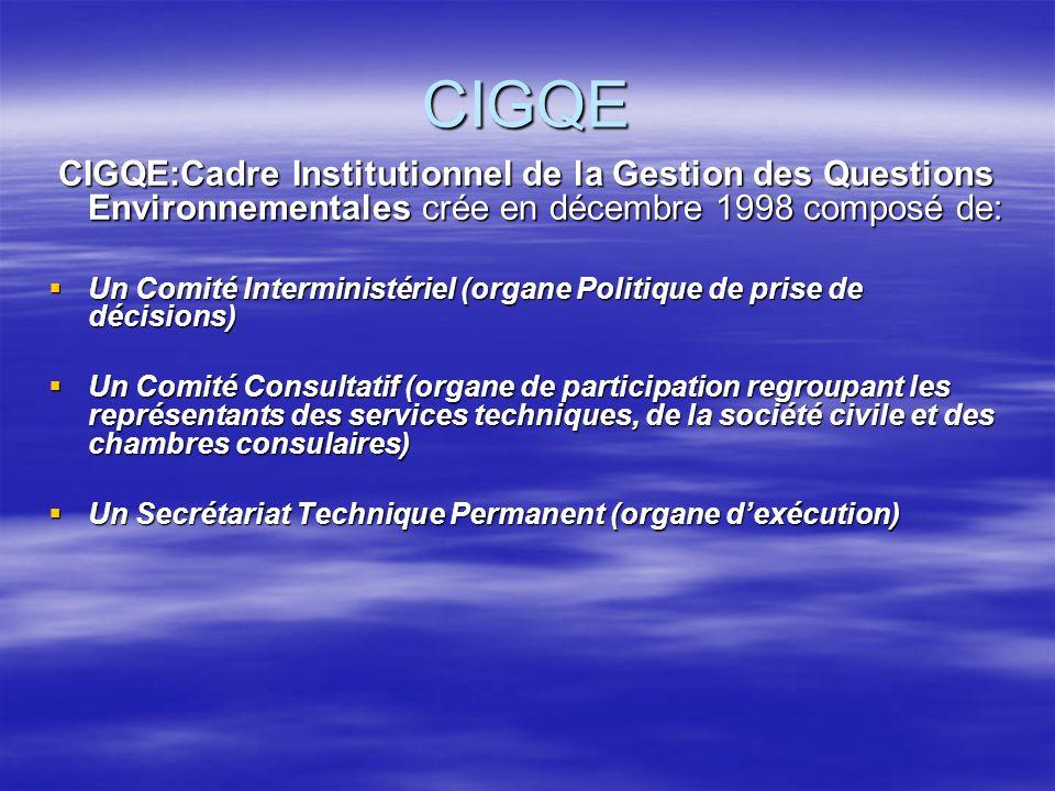 CIGQE CIGQE:Cadre Institutionnel de la Gestion des Questions Environnementales crée en décembre 1998 composé de: