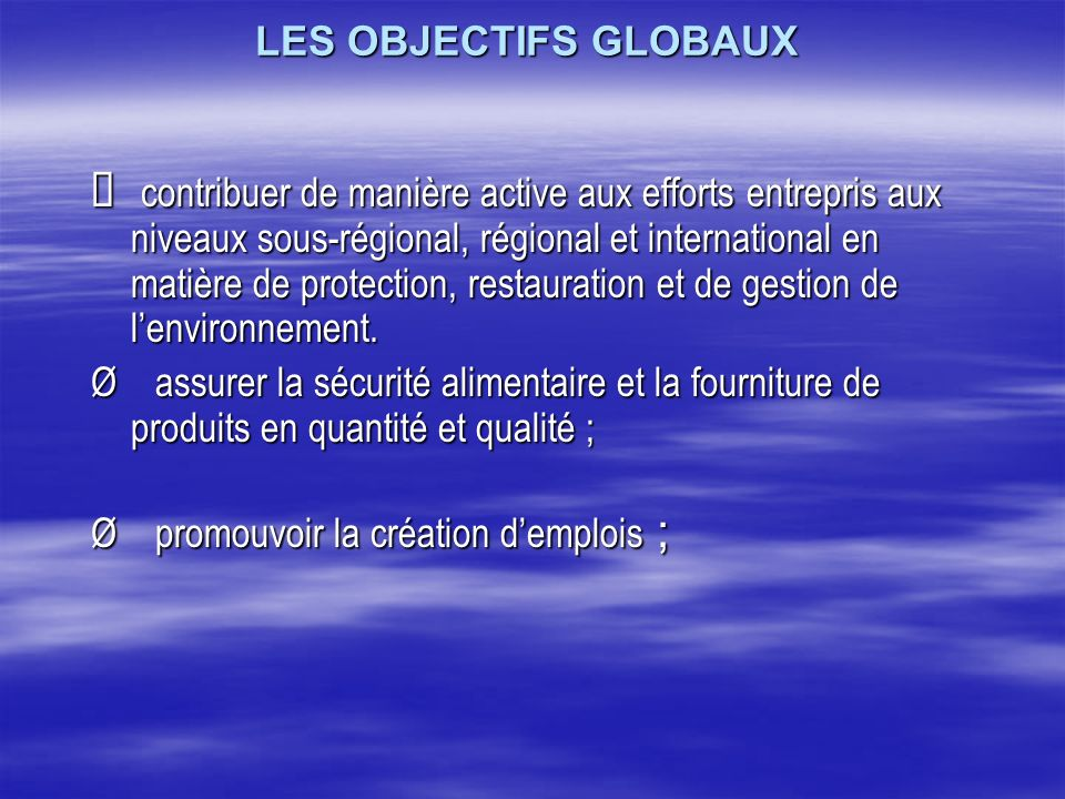LES OBJECTIFS GLOBAUX