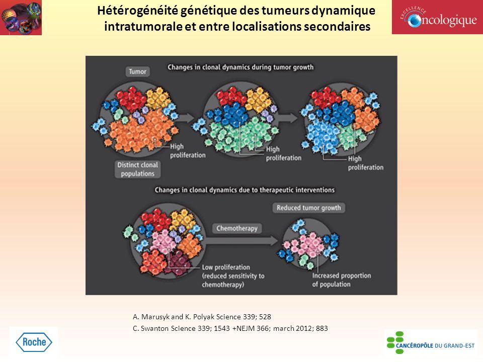 Hétérogénéité génétique des tumeurs dynamique