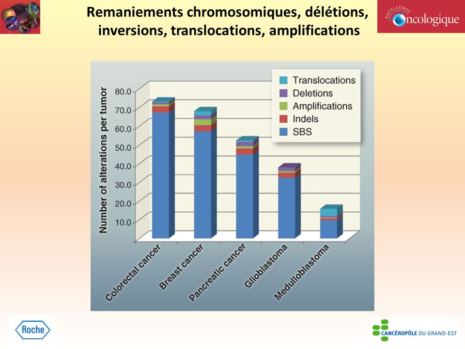 Remaniements chromosomiques, délétions,