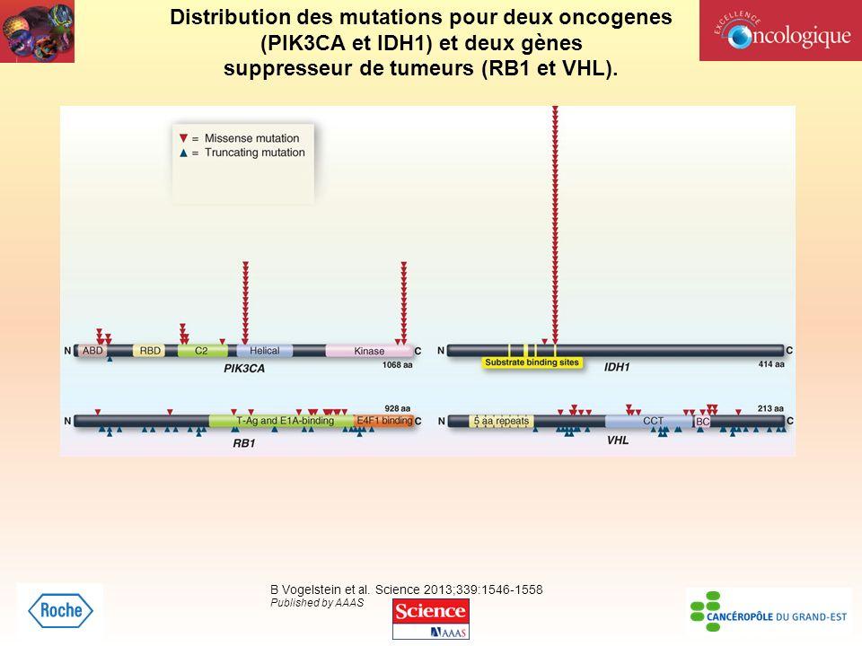 Distribution des mutations pour deux oncogenes
