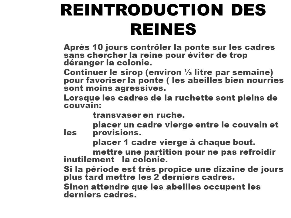 REINTRODUCTION DES REINES