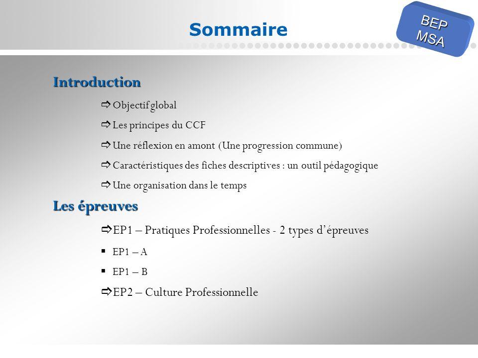Sommaire Introduction Les épreuves BEP MSA